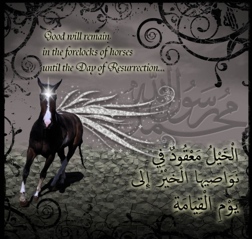 The one for whom they are a source of reward, is he who keeps a Horse for Allah's Cause [Jihad]